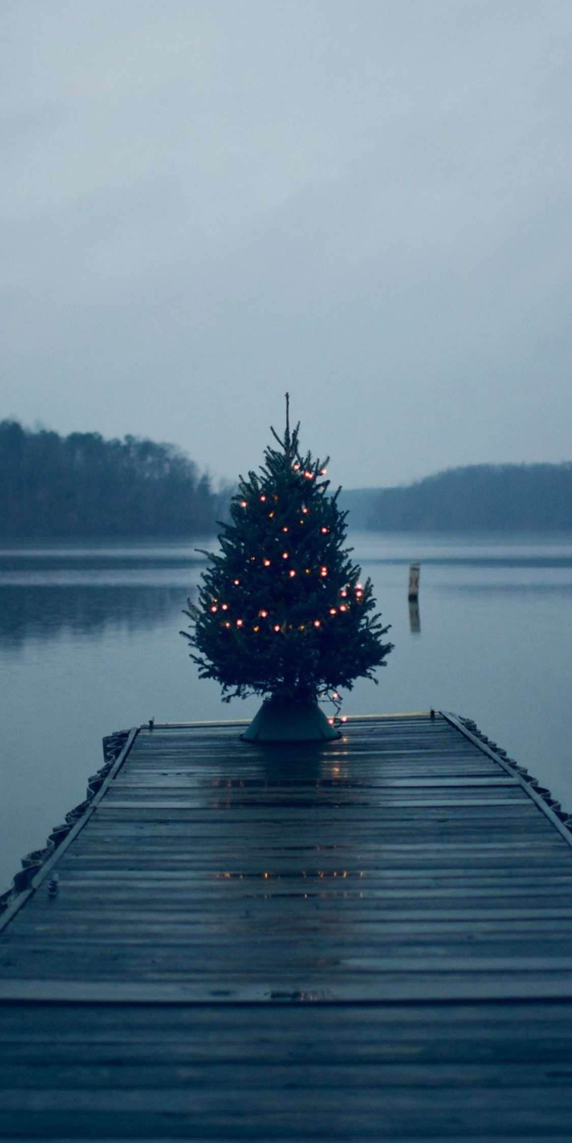 Christmas Tree on Pier iPhone Wallpaper