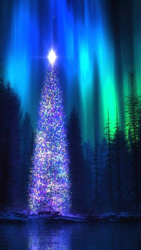 Nothern Lights Christmas Tree iPhone Wallpaper