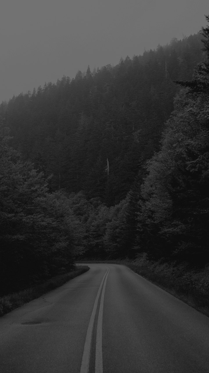 Black and White Nature iPhone Wallpaper
