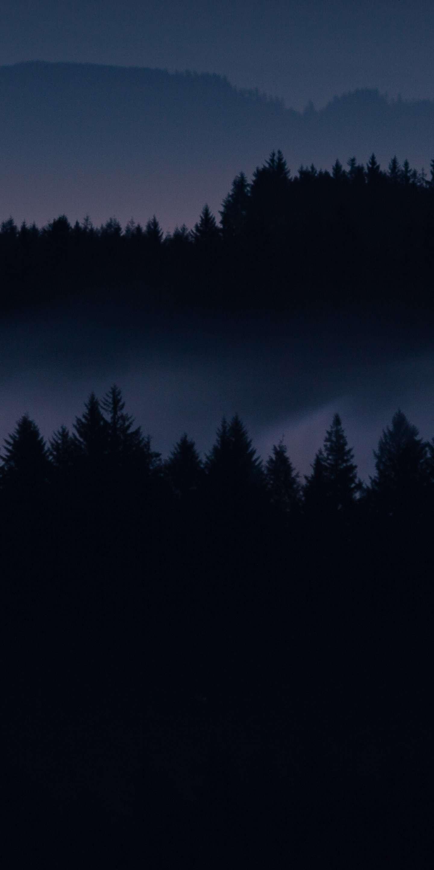 Dark Forest HD iPhone Wallpaper