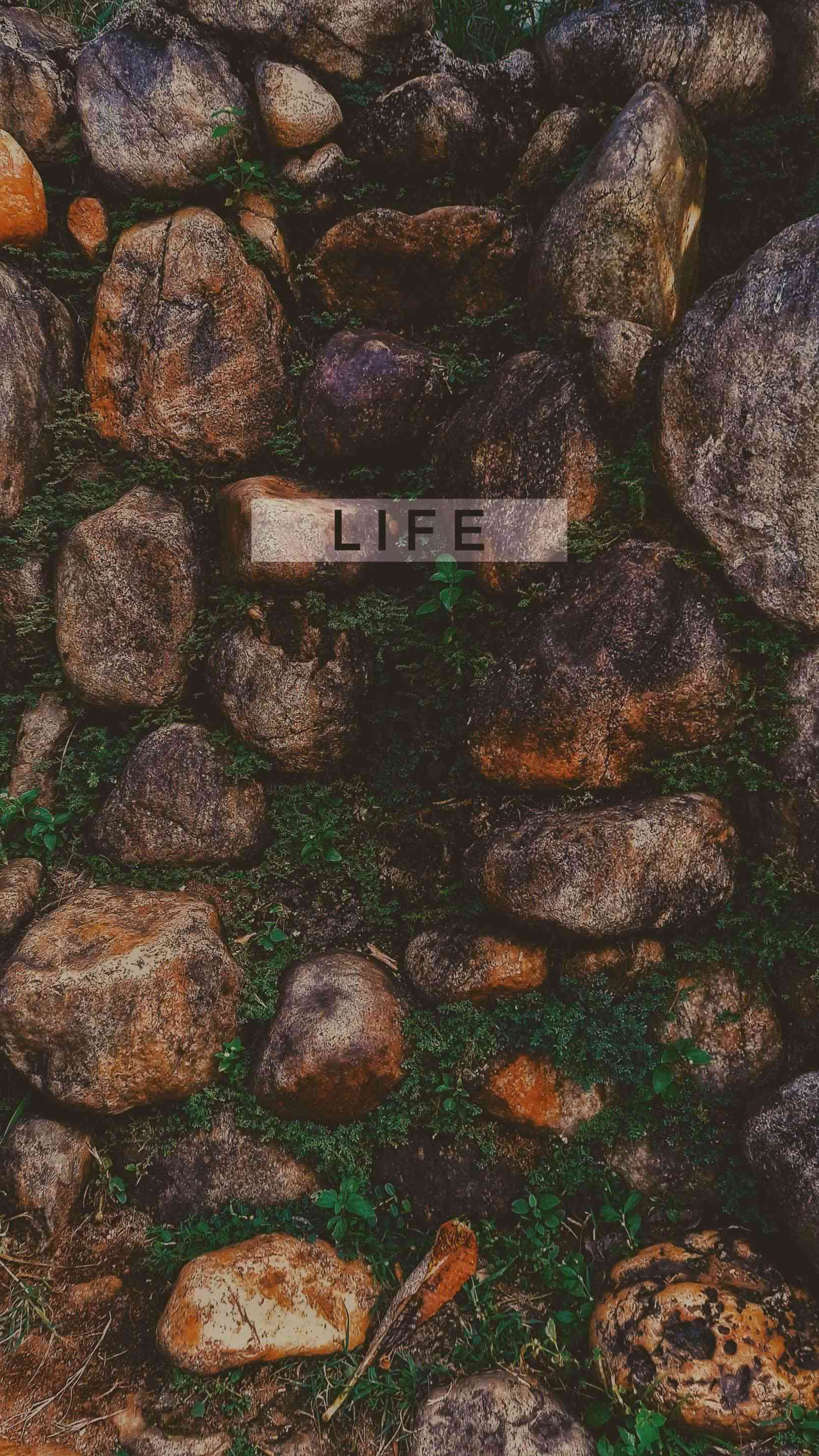 Nature is life iPhone Wallpaper