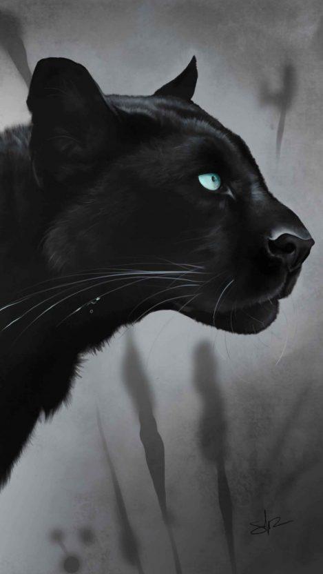 Black Jaguar iPhone Wallpaper
