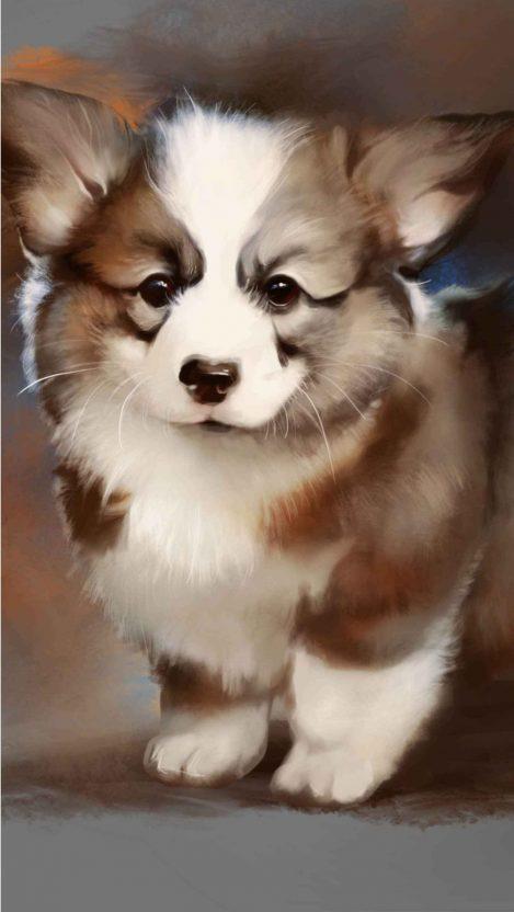 Corgi puppy iPhone Wallpaper