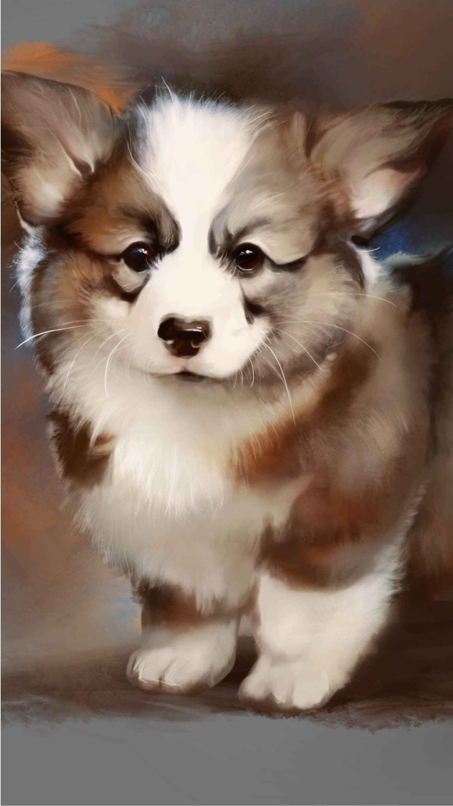 Corgi puppy iPhone Wallpaper