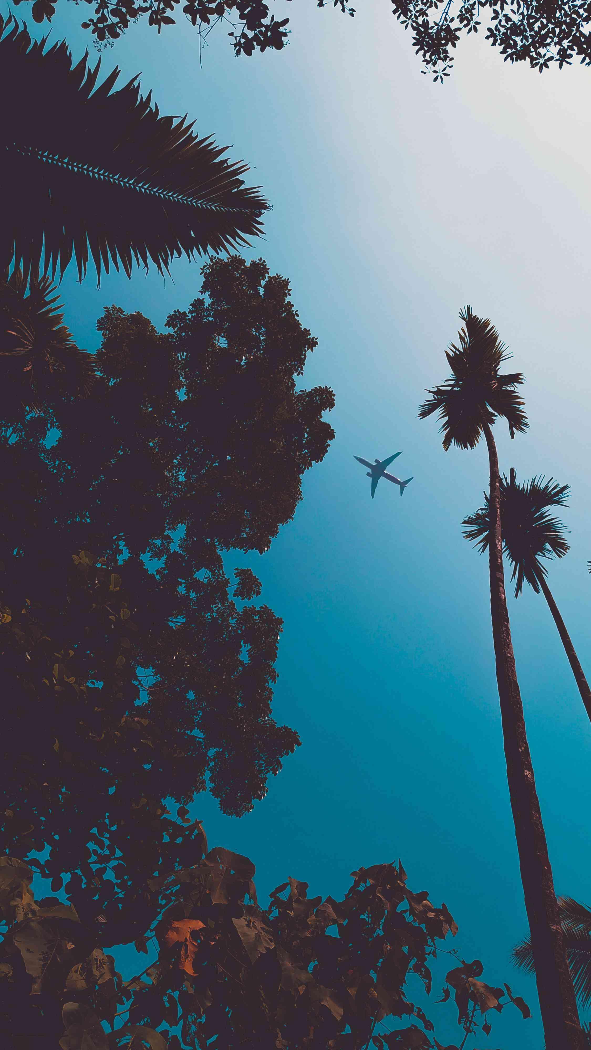 Plane in Sky Nature iPhone Wallpaper