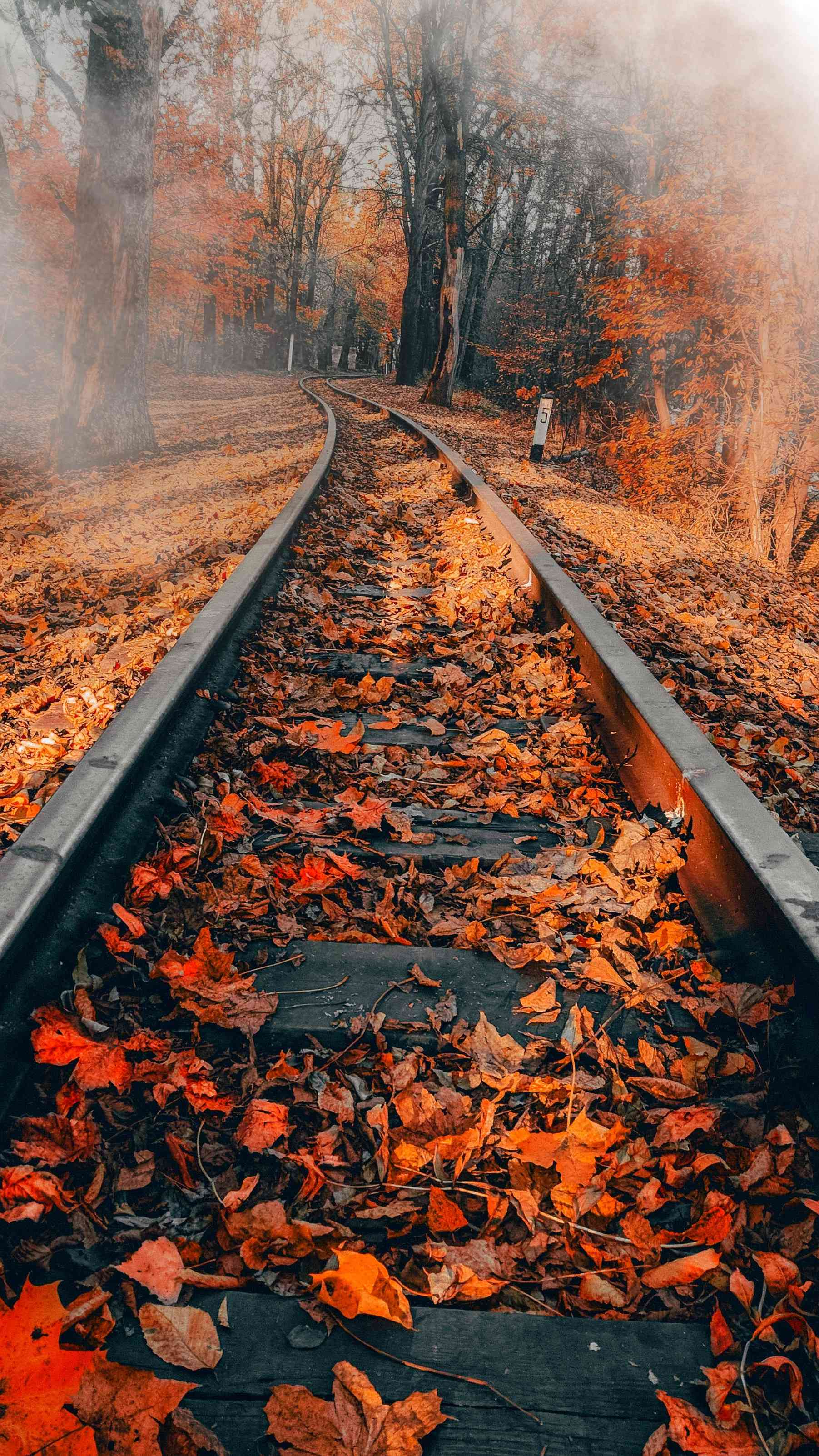 Railway Autumn iPhone Wallpaper