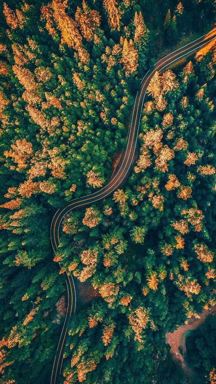 Road Nature Sky View iPhone Wallpaper