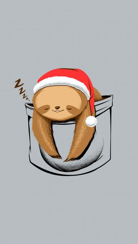 Cute Sloth in Pocket iPhone Wallpaper
