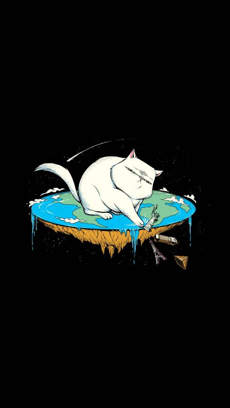 Flat earth cat iPhone Wallpaper