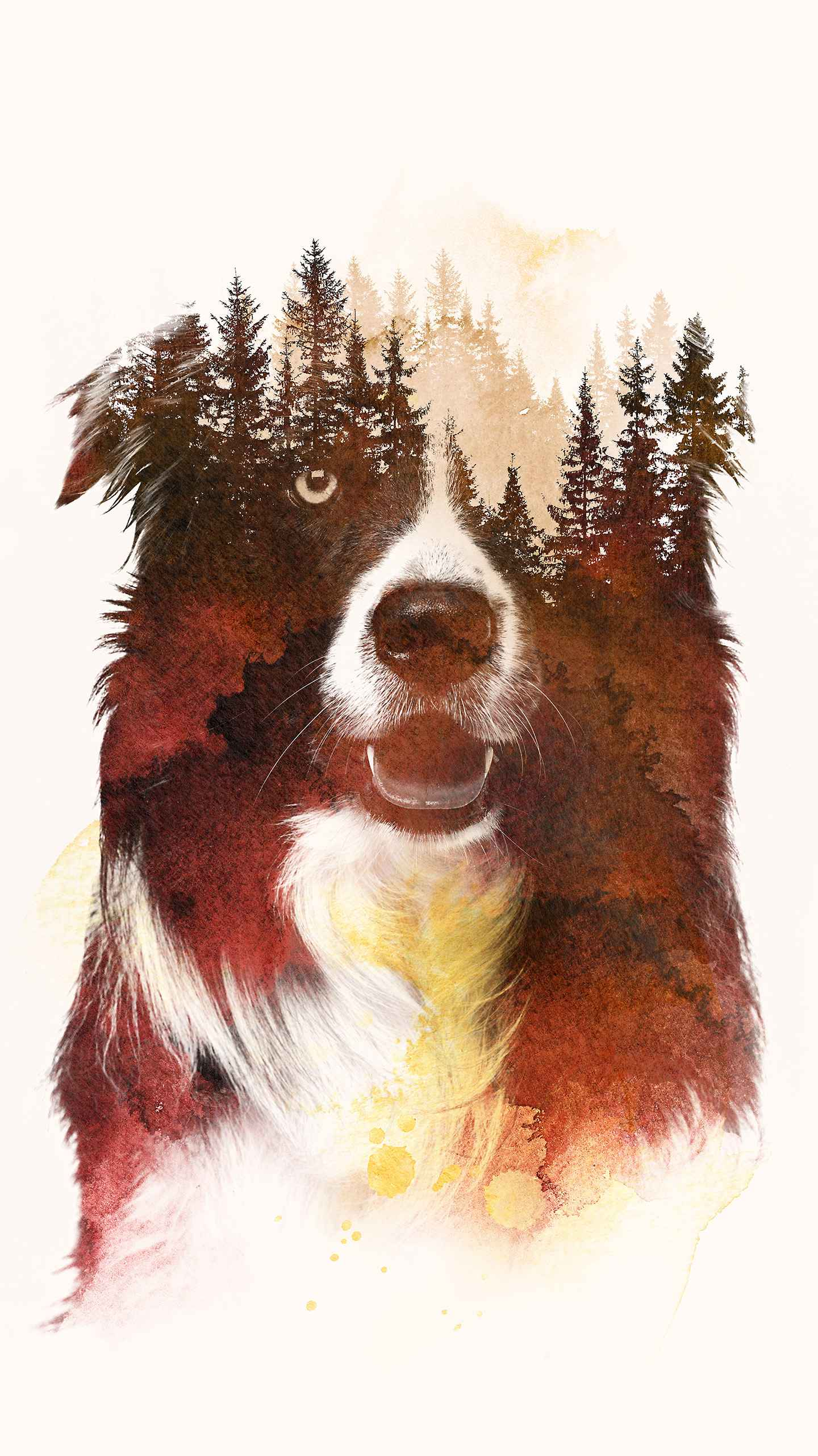 Forest Dog iPhone Wallpaper