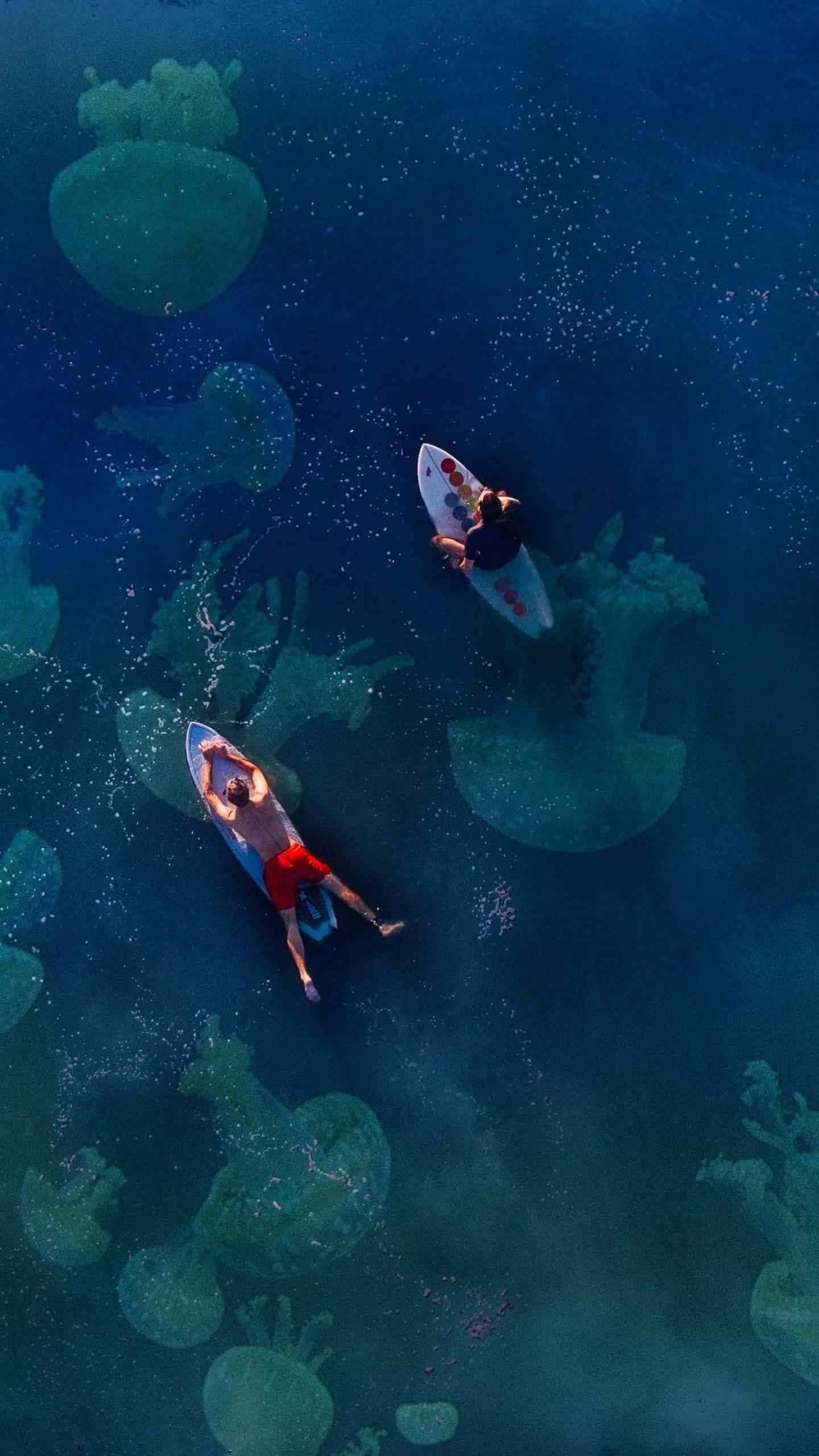 Surfing Ocean iPhone Wallpaper