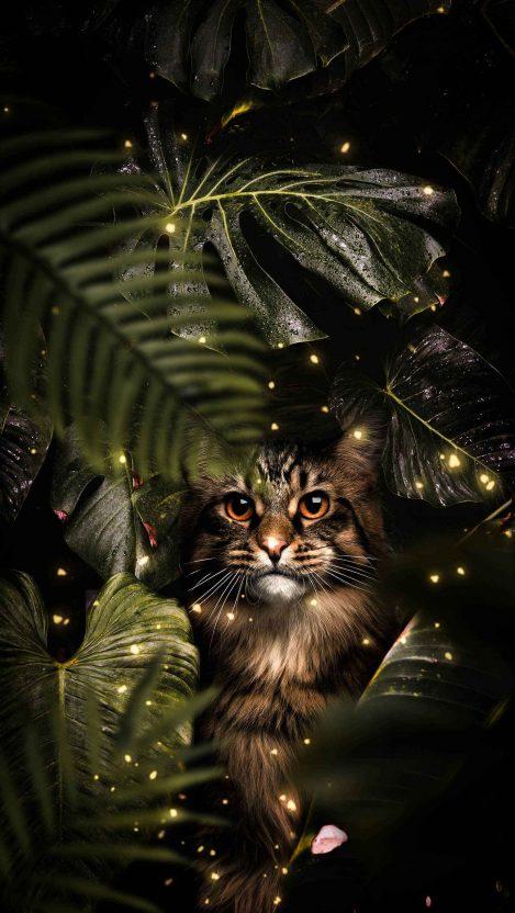 Tropical Cat iPhone Wallpaper