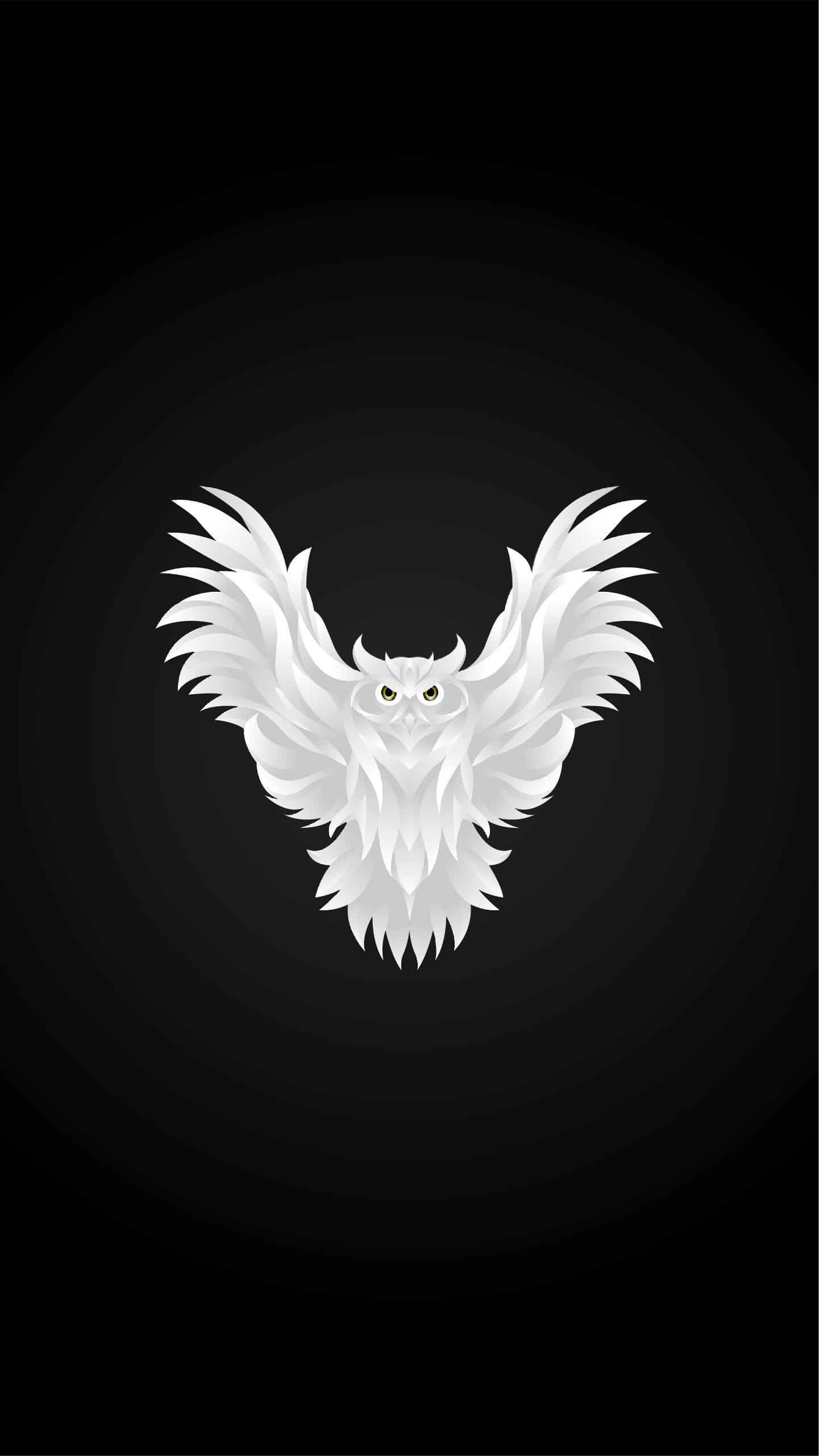 White Owl iPhone Wallpaper