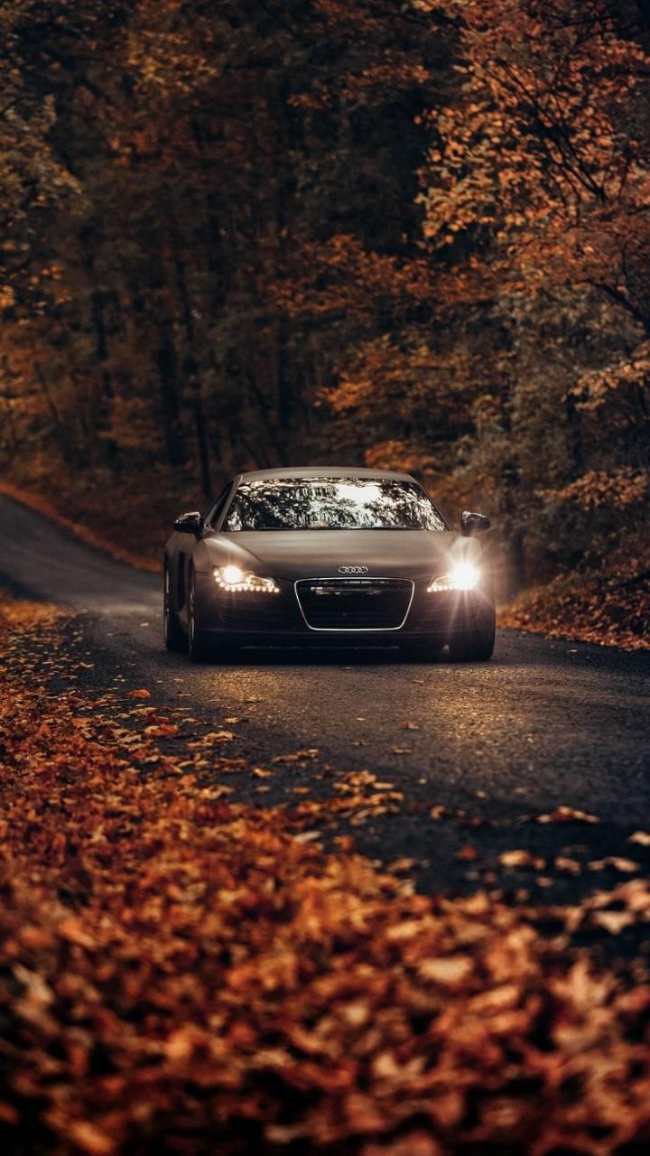 Audi R8 Autumn iPhone Wallpaper