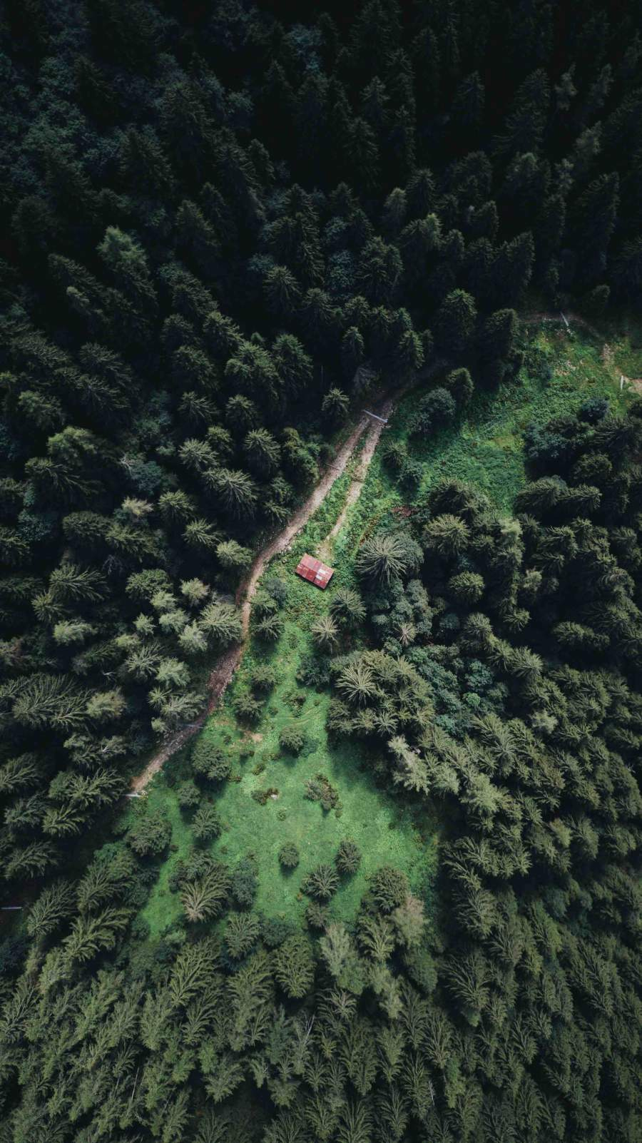 Cabin In the Woods Aerial View iPhone Wallpaper