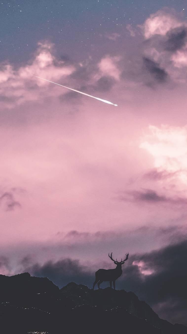 Deer and Sky Meteor iPhone Wallpaper