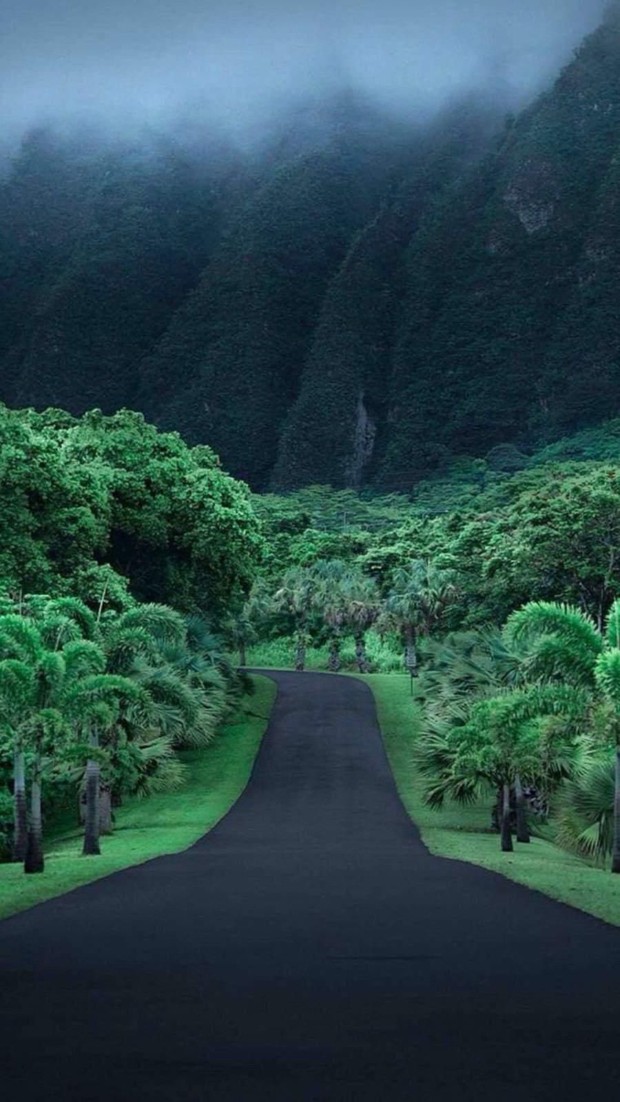 Hawaii Nature iPhone Wallpaper