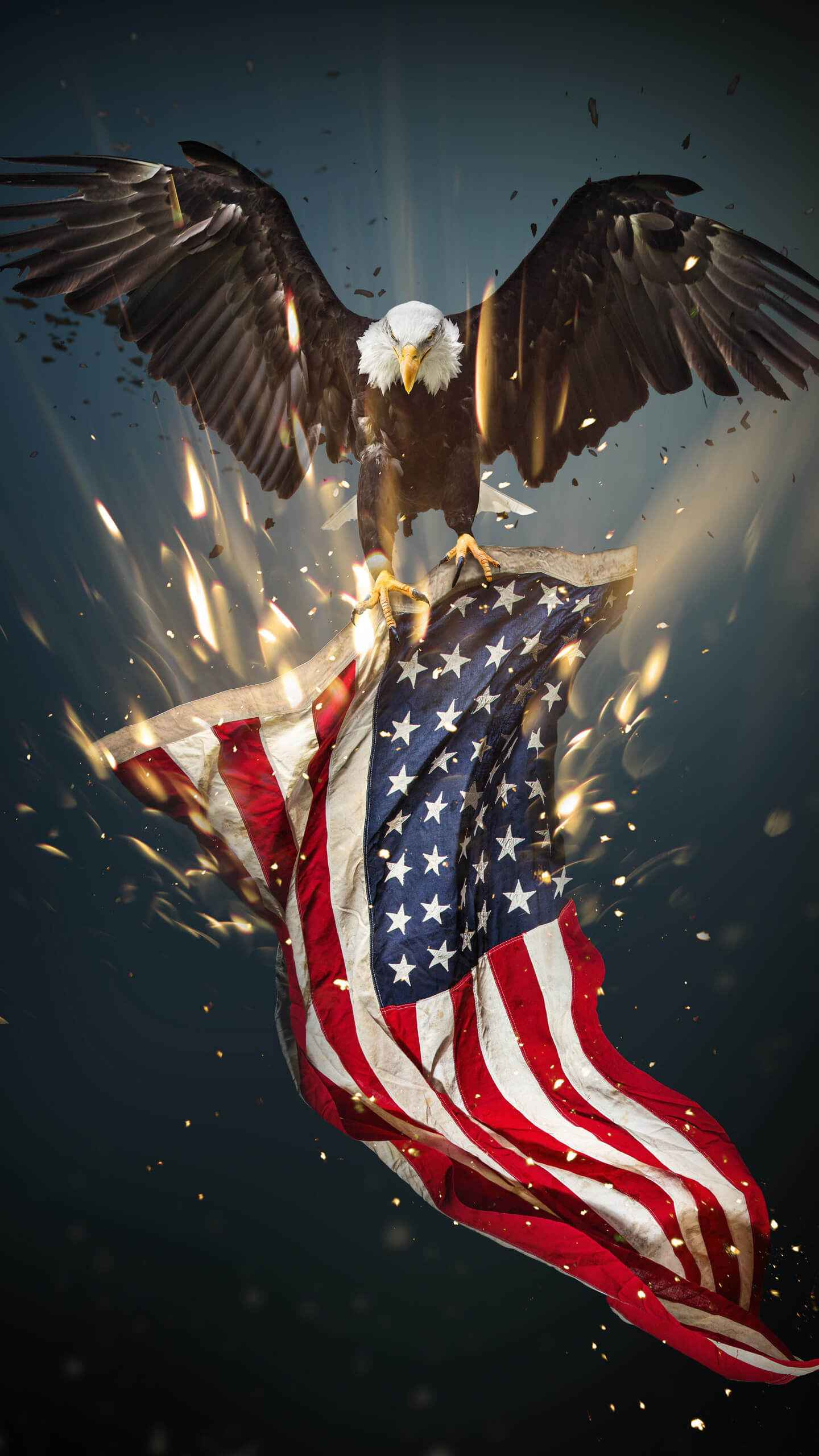 USA Eagle iPhone Wallpaper