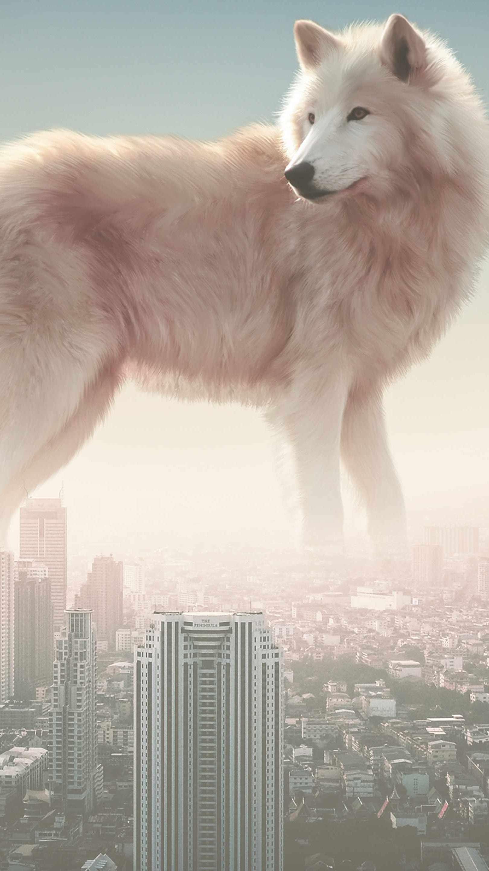 City Wolf iPhone Wallpaper