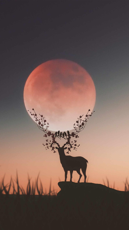 Deer Silhouette Moon iPhone Wallpaper