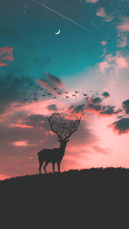 Deer Sunset Silhouette iPhone Wallpaper
