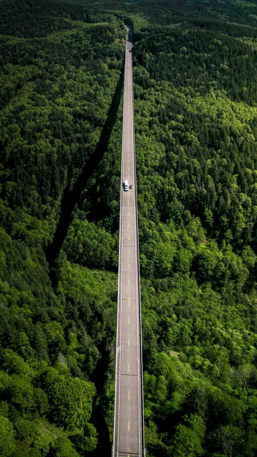 Forest Freeway Bridge iPhone Wallpaper