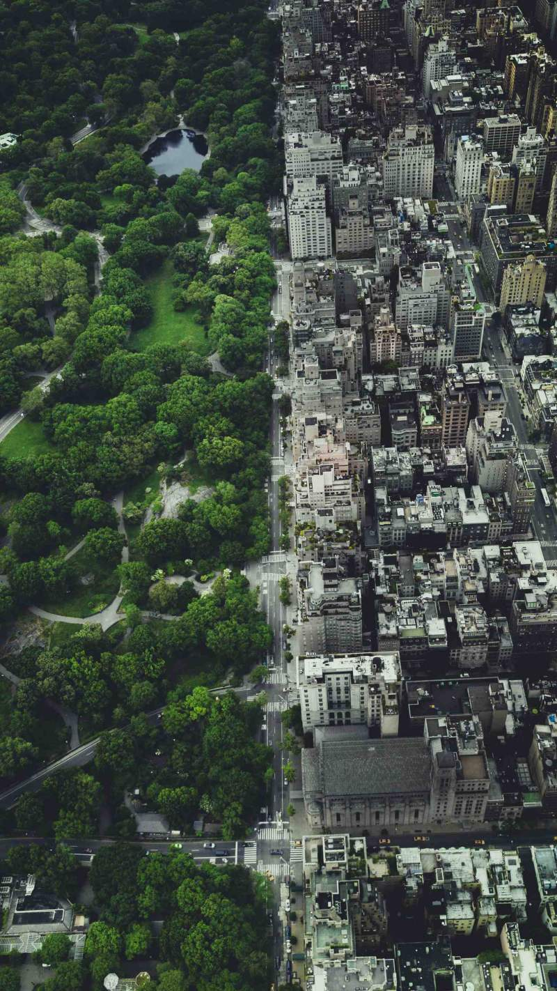 NYC Central Park iPhone Wallpaper