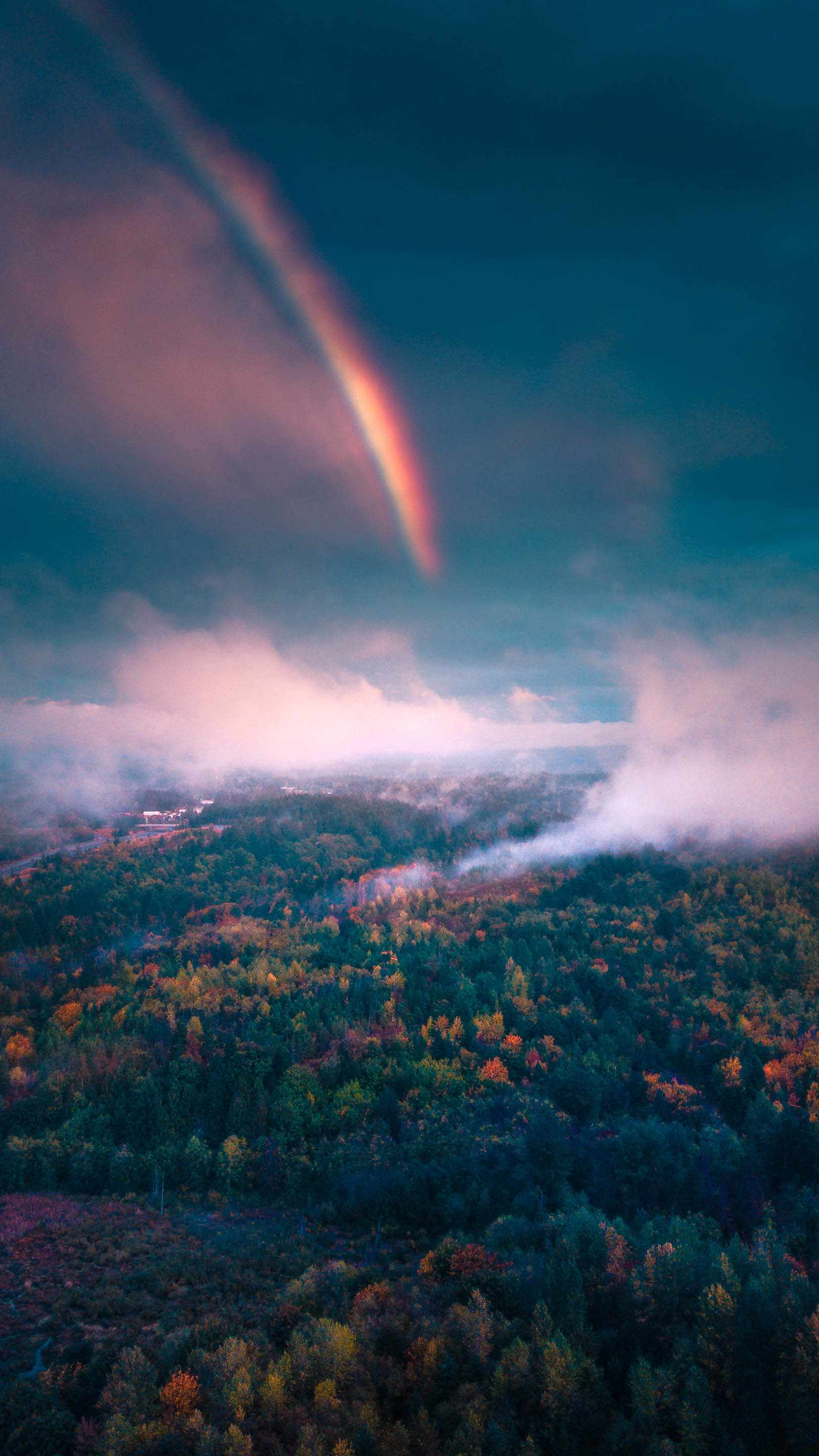 Nature Rainbow Forest Morning Mist iPhone Wallpaper