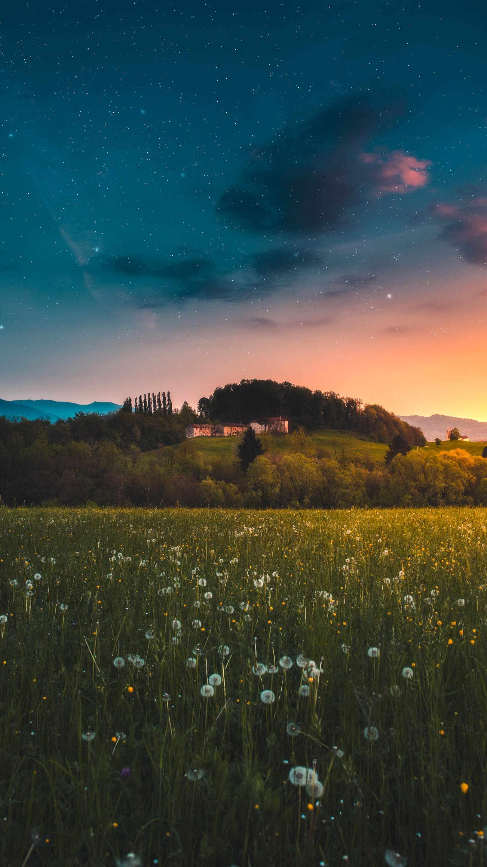 Tuscany Nature iPhone Wallpaper