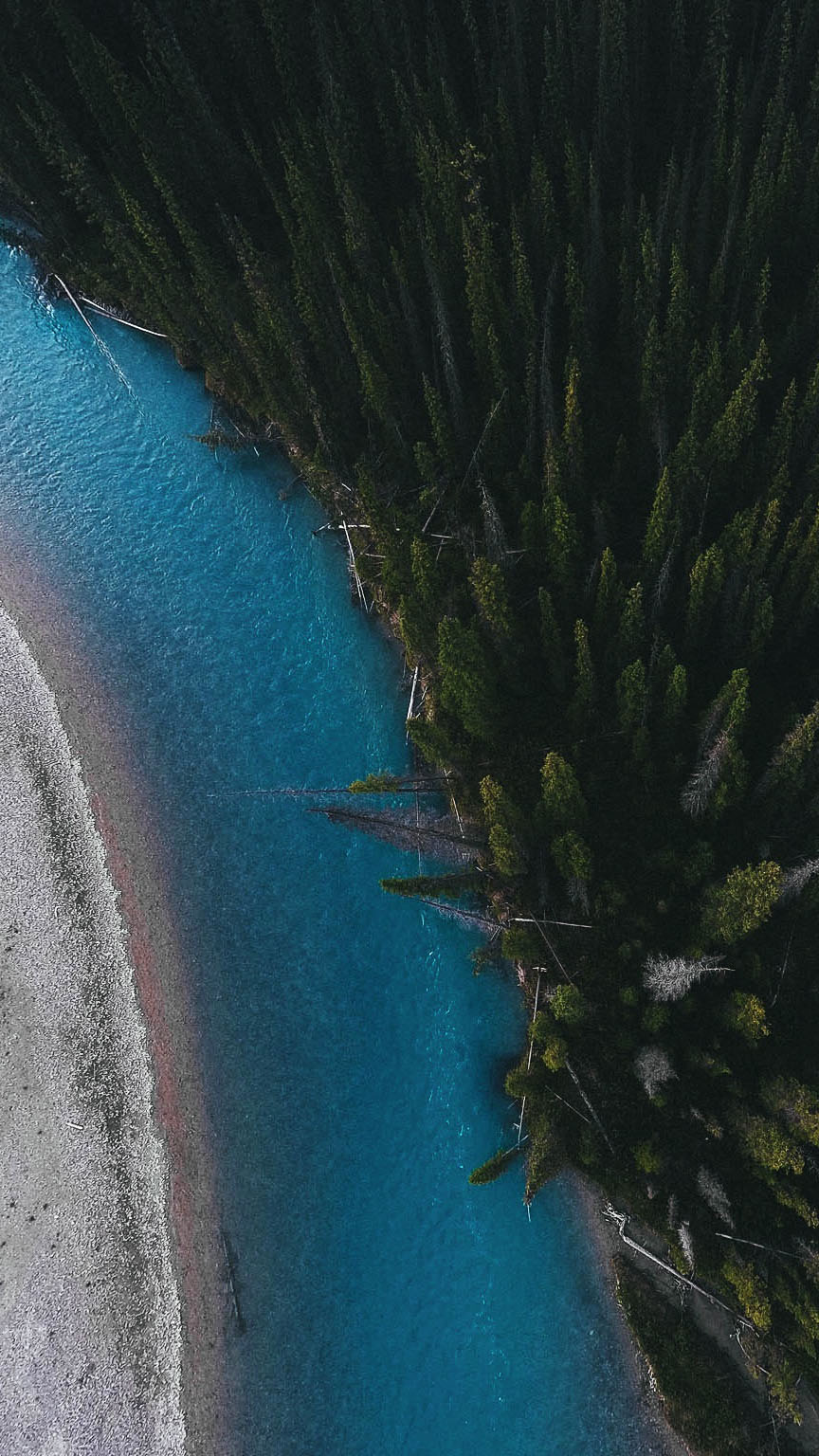 Blue Lake Forest iPhone Wallpaper