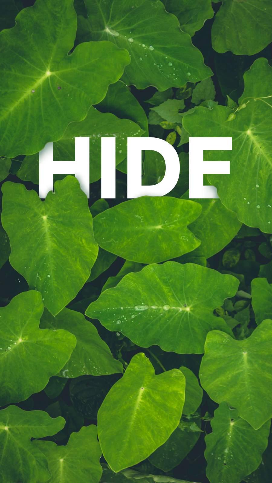 Hide in Nature iPhone Wallpaper