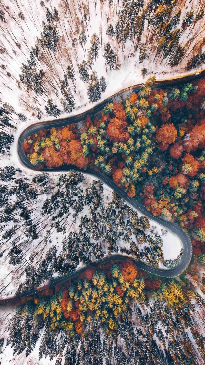Two Seasons of Nature iPhone Wallpaper