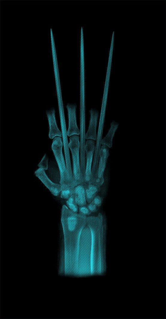 Wolverine Claws X Ray iPhone Wallpaper