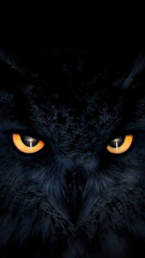 Owl Dark Glowing Eyes iPhone Wallpaper