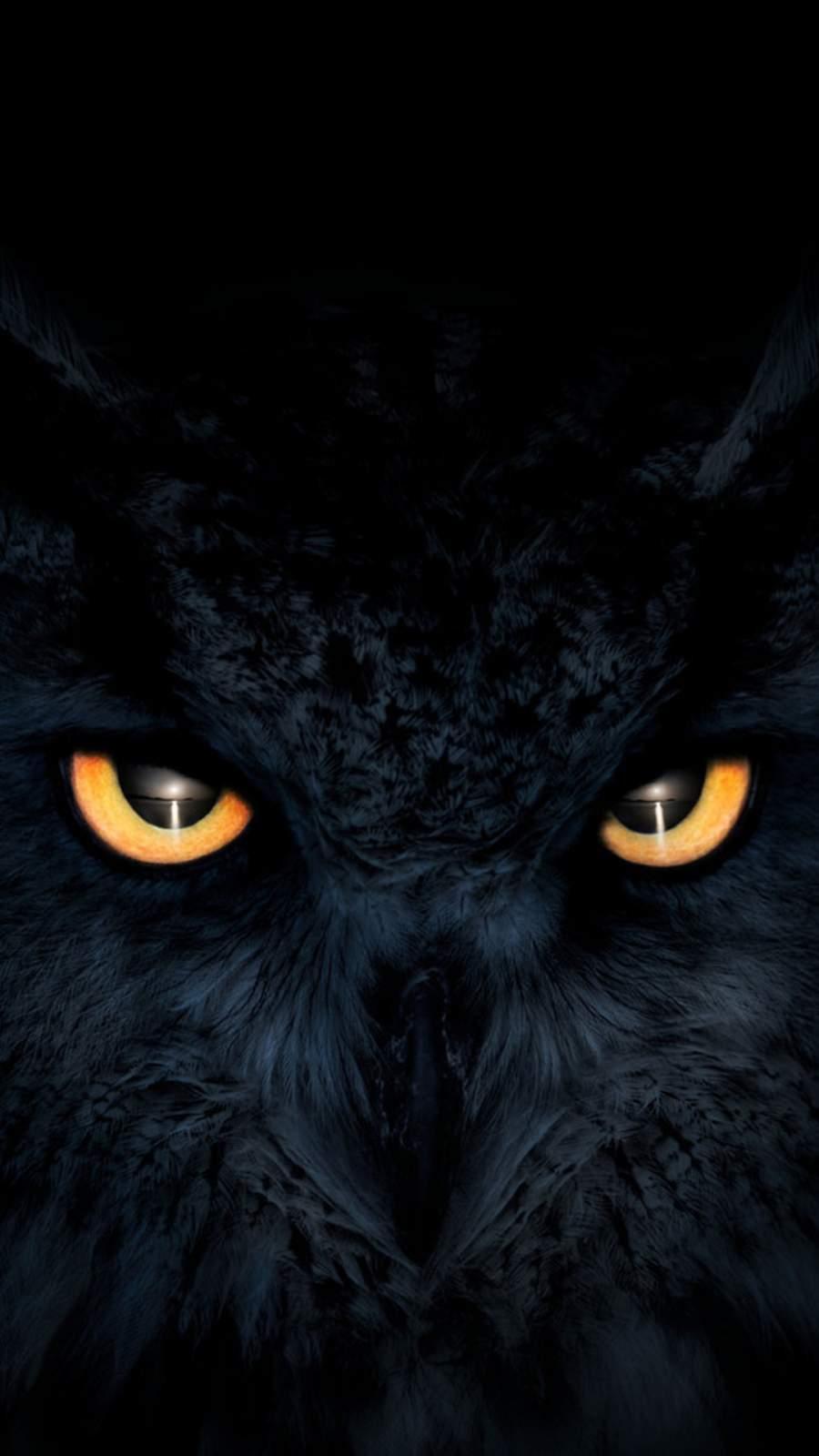 Owl Dark Glowing Eyes iPhone Wallpaper