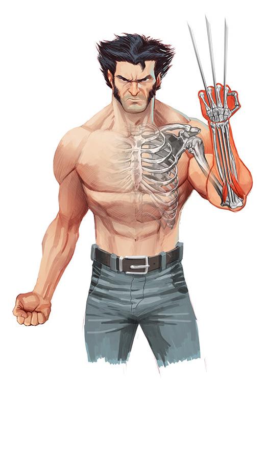 Wolverine Skeleton iPhone Wallpaper