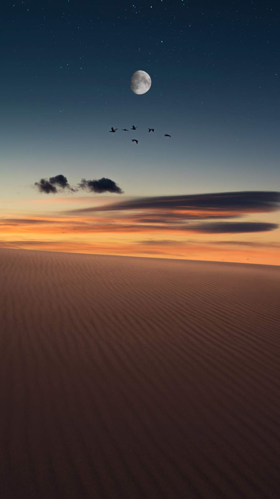 Desert Sunset iPhone Wallpaper