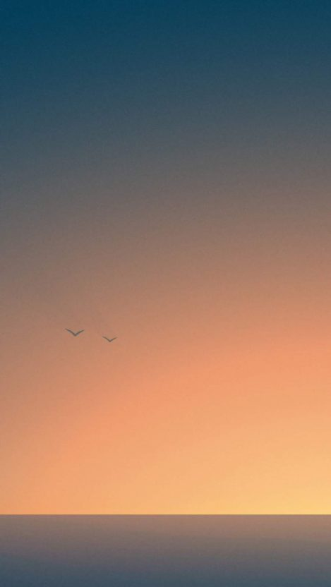 Flying to the Sunset iPhone Wallpaper