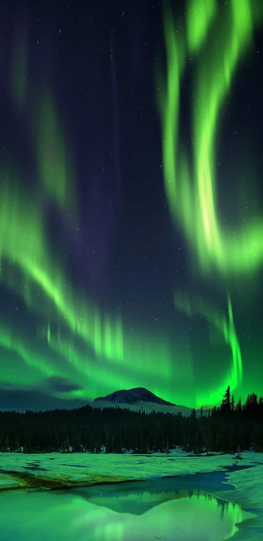 Aurora Borealis Snow Night iPhone Wallpaper