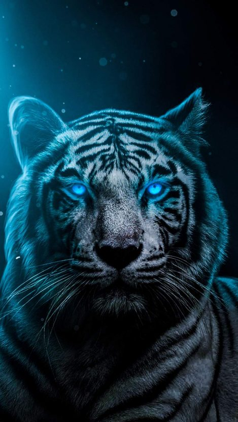 Blue Eyes Lion iPhone Wallpaper