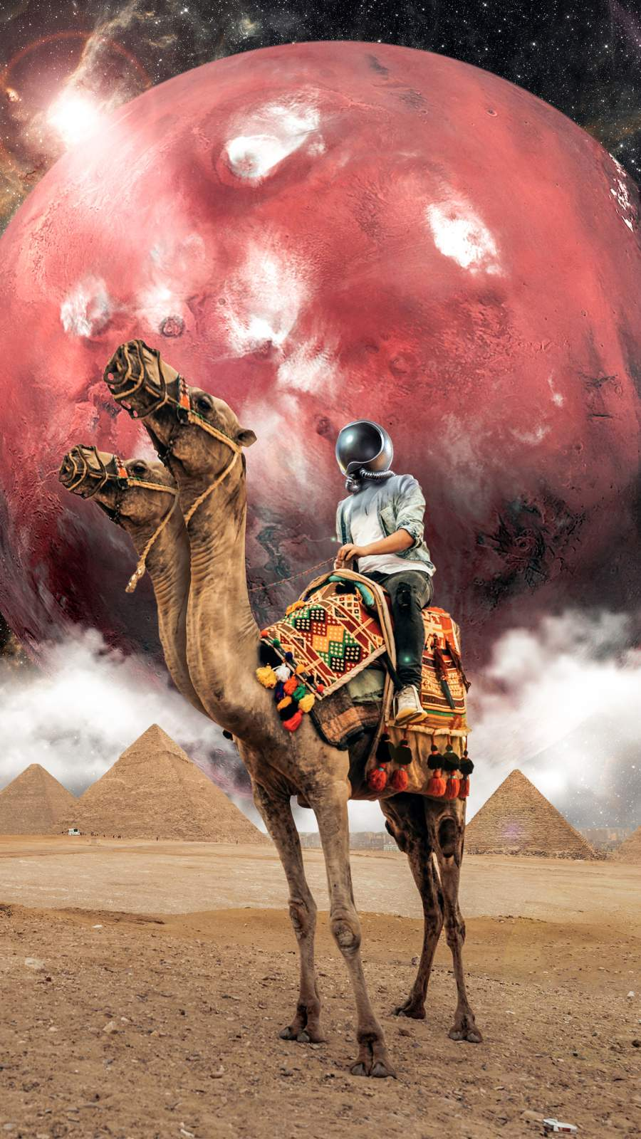 Camel Astronaut iPhone Wallpaper