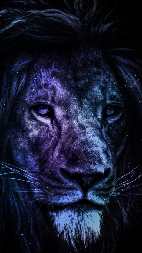 The Predator iPhone Wallpaper
