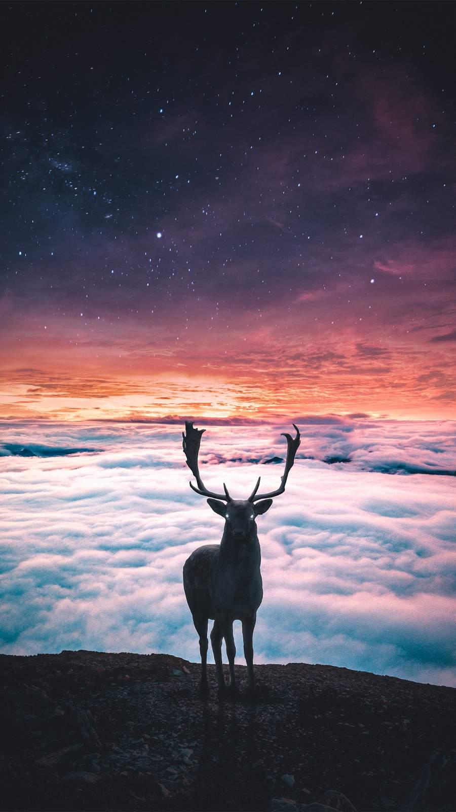 Deer World iPhone Wallpaper