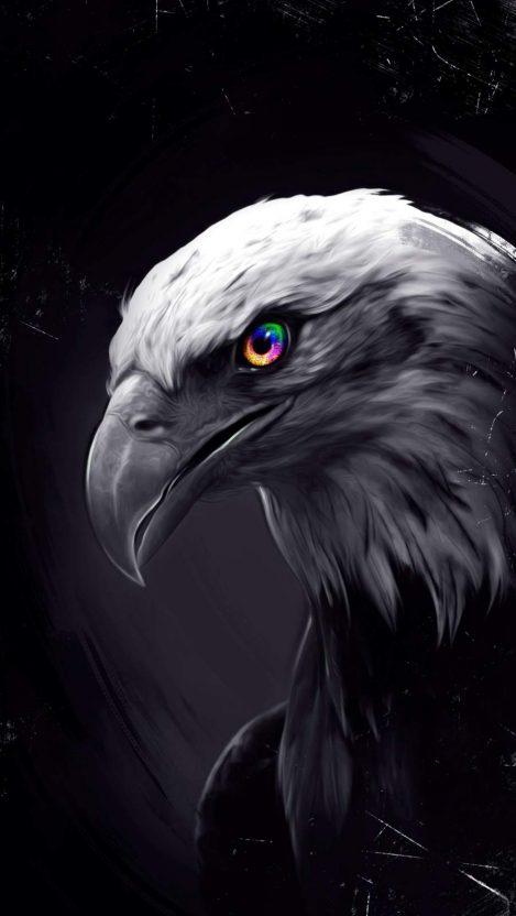 Eagle Eyes iPhone Wallpaper