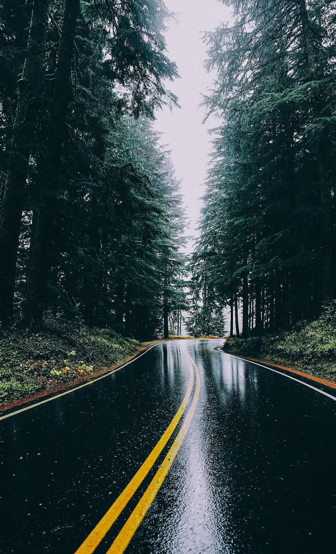 Rain Road iPhone Wallpaper