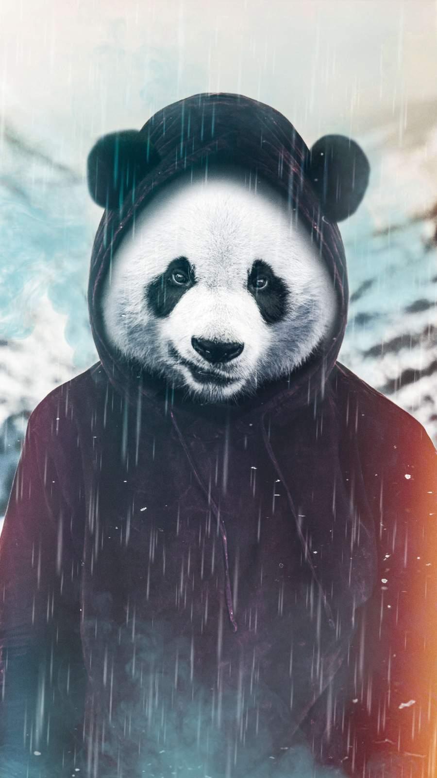 The Panda iPhone Wallpaper