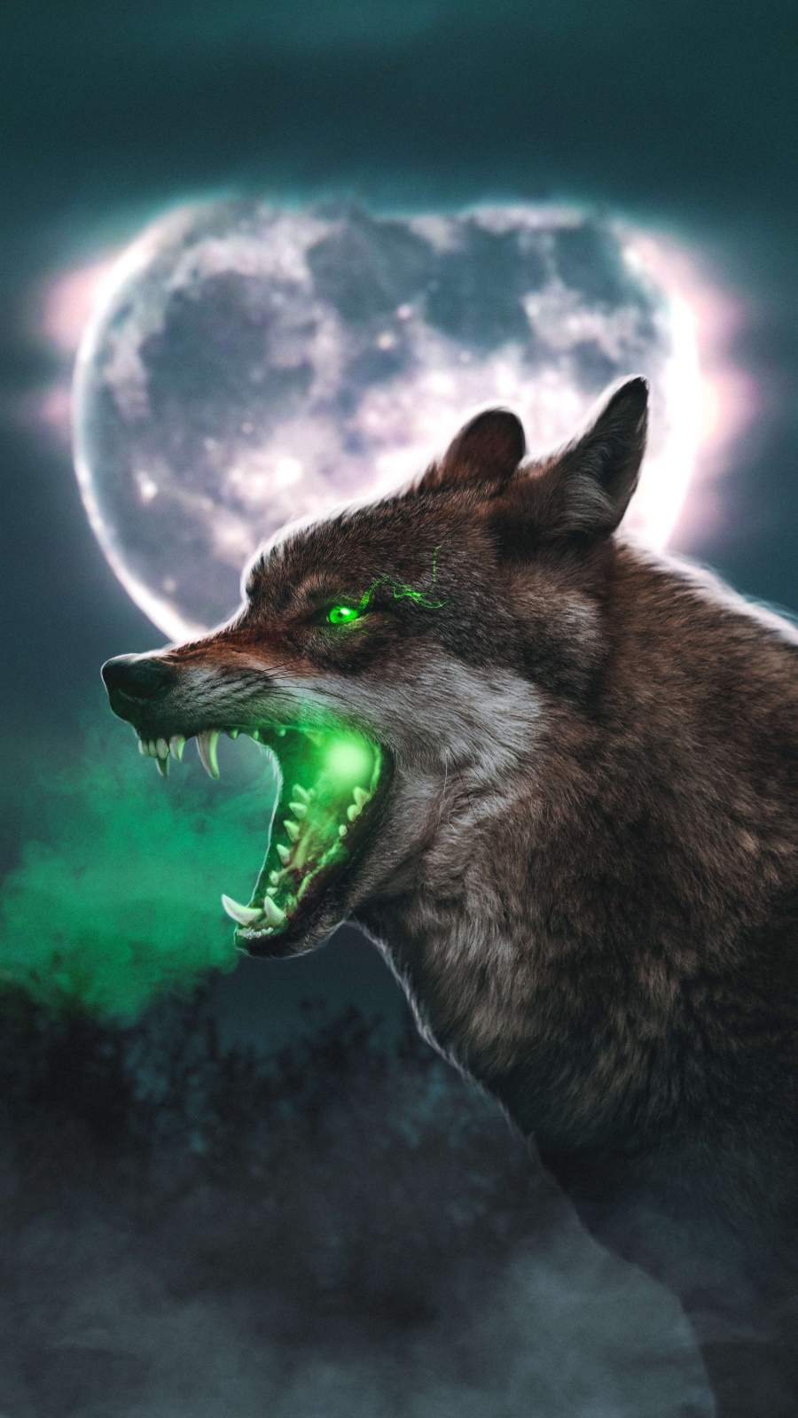 The Wolf iPhone Wallpaper