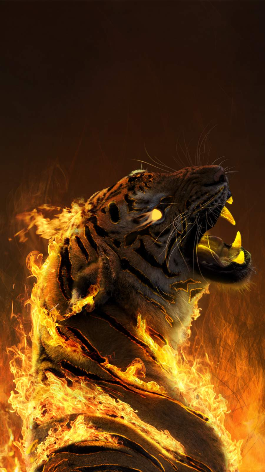 Burning Tiger iPhone Wallpaper