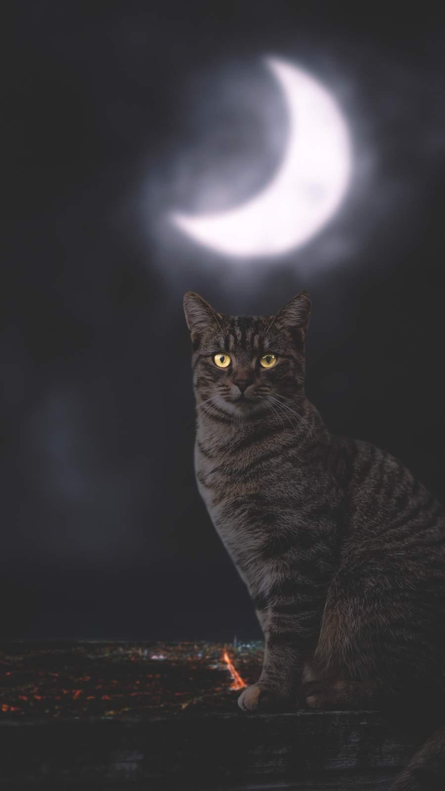 Cat Moon iPhone Wallpaper