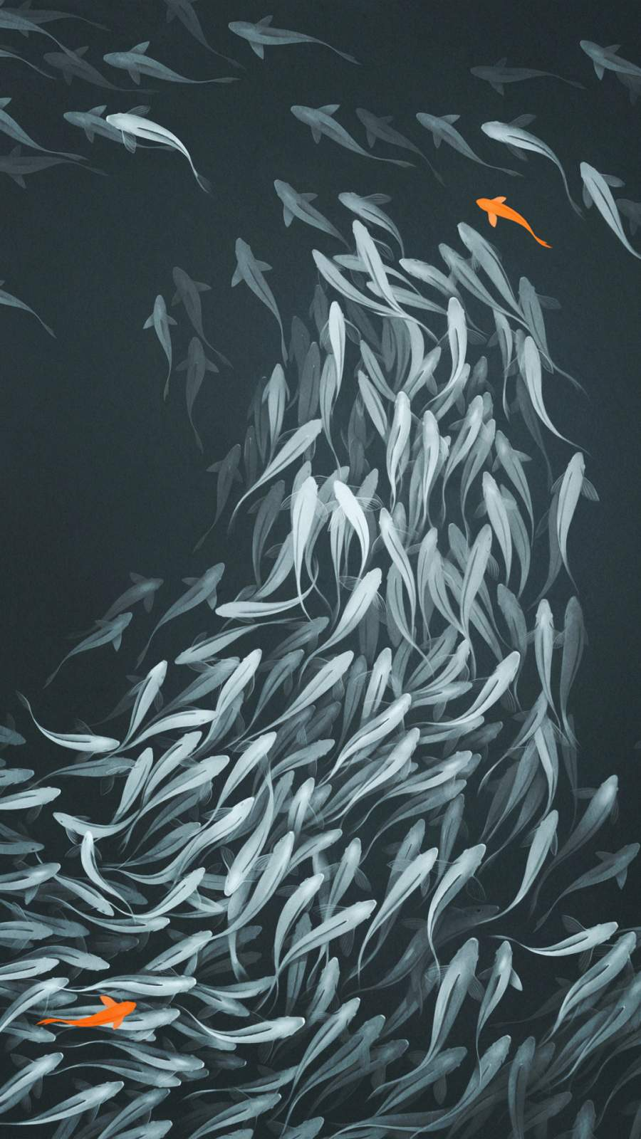 Fish Tank iPhone Wallpaper